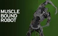 CarbonRobotics的自主除草机是高效机器人的另一个很好的例子